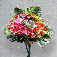 Opening Flower Stand- Cargo...